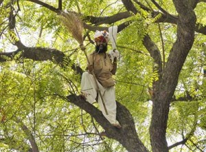 A Farmer Committed Suicide at AAP Rally Against Land Ordinance At Jantar Mantar